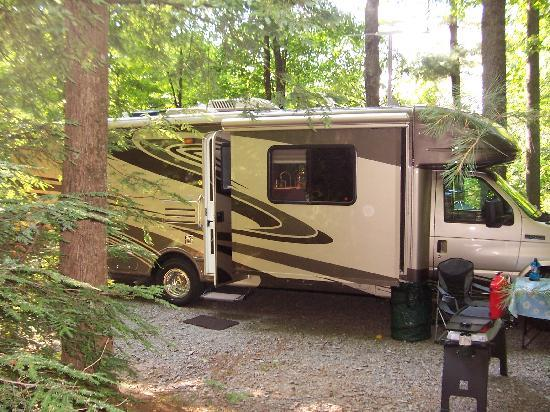 Black Forest Family Camping: Campsite at Black Frest