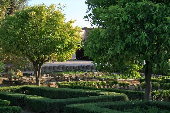 Ksar Char-Bagh: Our garden