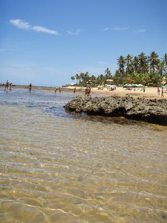 Pousada Farol das Tartarugas: Natural pool infront of hotel