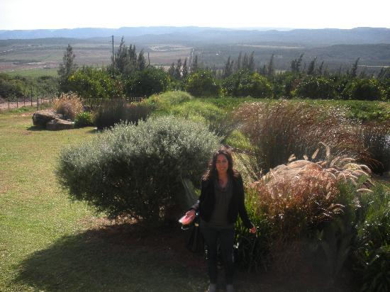 Addo Dung Beetle Guest Farm: the view