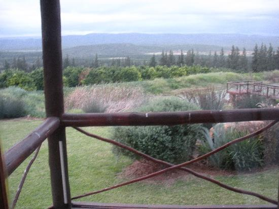 Addo Dung Beetle Guest Farm: you open the door and this is what you see from ur chalet