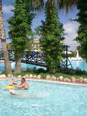 Corolla Hotel: Pool