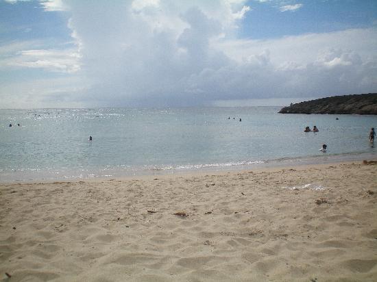 Buenas Olas Hotel: The Beach