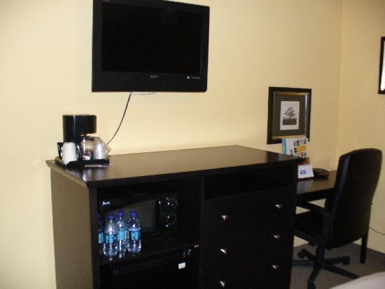 Solaire Inn and Suites: TV