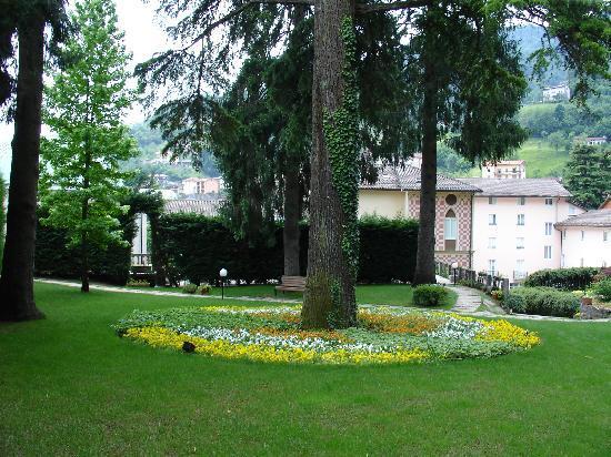 Hotel Trettenero: Pine Tree