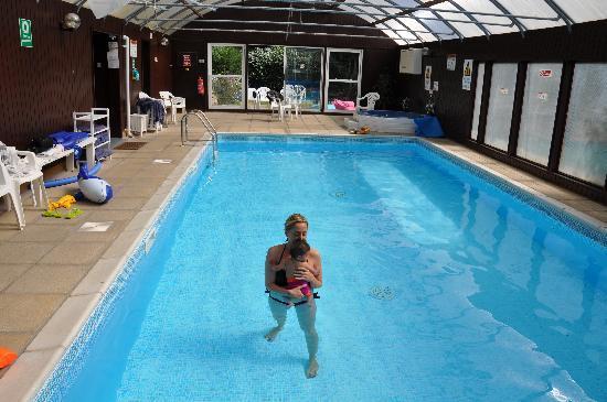 The Elmfield: Great pool