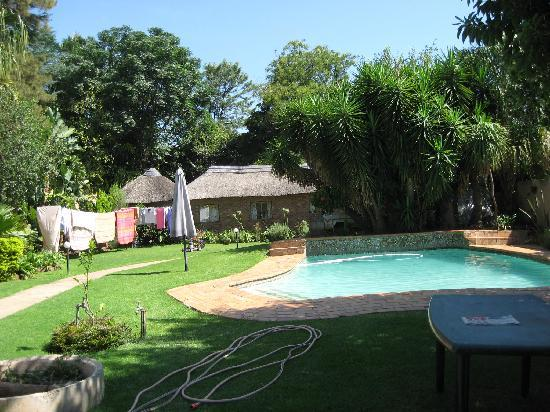 1322 Backpackers International: swimming pool and garden