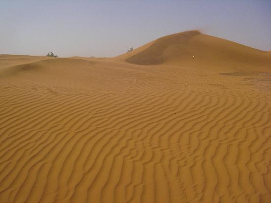 Hotel Kasbah Sahara Services: Short walk from hotel
