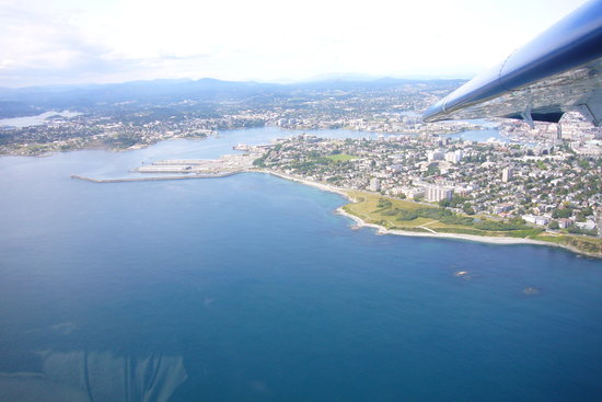 Harbour Air Seaplanes: view of victoria
