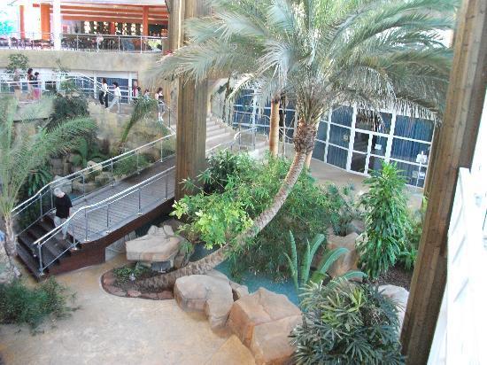 Hotel Flamingo Oasis: Atrium of hotel