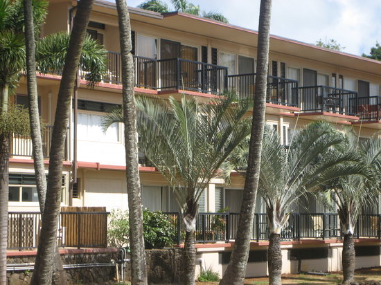 Prince Kuhio Condos: View from the east.