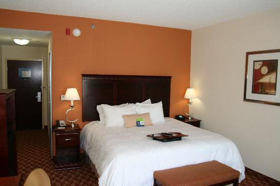 Hampton Inn Kingsland: Standard King Room