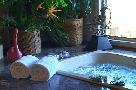 The Vagabond Inn: The Bristol Spa