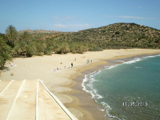 Sitia Beach City Resort & Spa: Palm Beach bei Vai