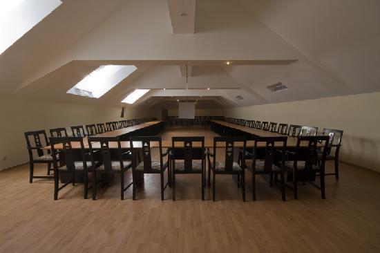 Hotel Ferdinand Baile Herculane: Conference room