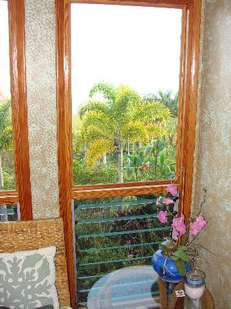 Aloha Guest House: View from the corner of the Horizon room