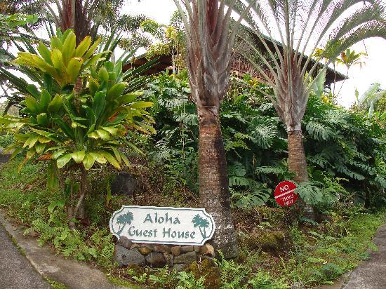 Driving up to the Aloha Guest House
