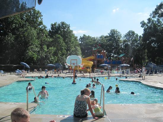 Yogi Bear's Jellystone Park Camp-Resort in Quarryville : Pool Area