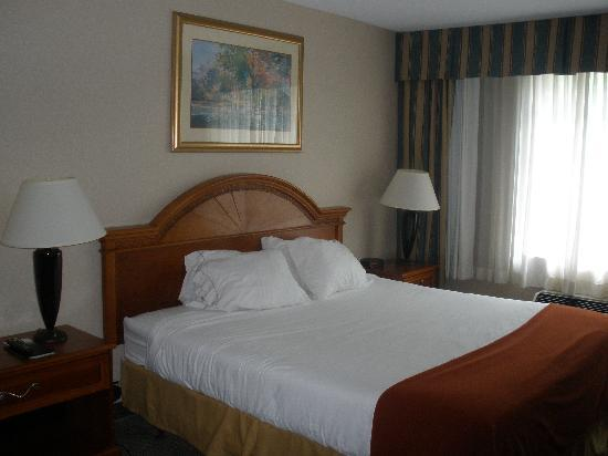 Holiday Inn Express Poughkeepsie: King Sized Bed (Comfy!!!!!)