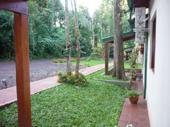 Cabanas Luces de la Selva : frente de las cabañas