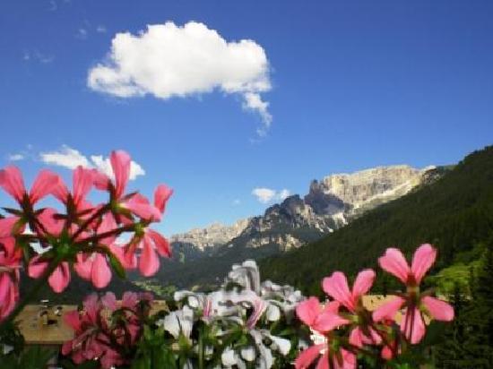 Hotel Alpi: Alpi vista da Junior Suite
