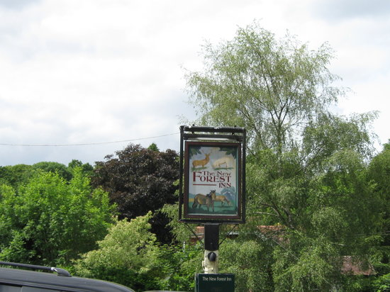 The New Forest Inn: looks nice, but thats about it