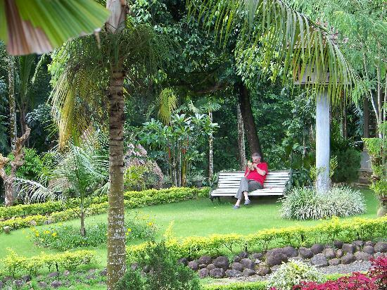 Meenachil Enclave Homestay: enjoyed some reading time at the garden
