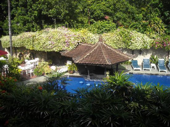 Ari Putri Hotel: Pool Area from Room