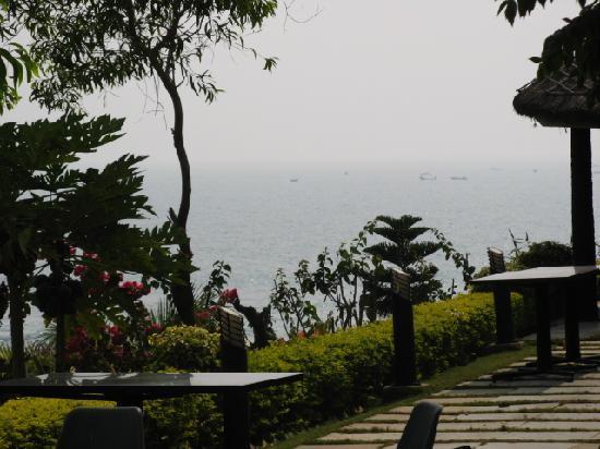 Punami Rishikonda: Way to beach
