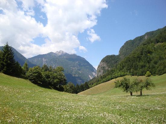 Gasthof Pontiller : Blick auf den Hausberg Hochstadel