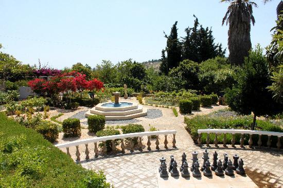 Quinta Bonita Luxury Boutique Hotel: The Gardens At Quinta Bonita