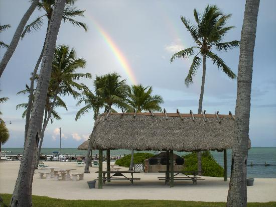Breezy Palms Resort: We caught a double rainbow out back!