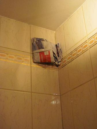 Le Parthenon Hotel: Something patched up in the bathroom with newspaper