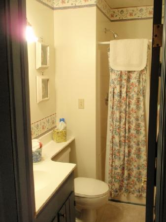 The James Wylie House : Bathroom