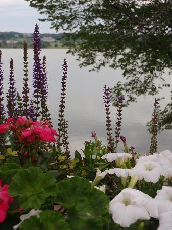 The Water's Edge: flowers on upper deck