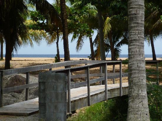 Fleurs des Iles : Le petit pont qui mène au Paradis...