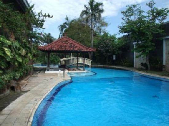 The Graha Cakra Bali Hotel: The start of the 107m long pool showing wet bar (not open).