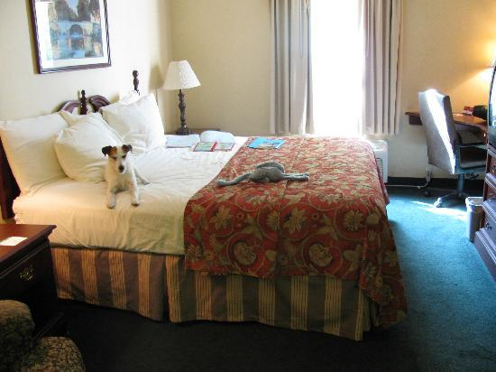 Baymont Inn & Suites Jacksonville: King N/S room, wifi, micro & fridge