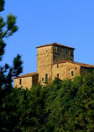 Montone, İtalya: Torre Di Moravola