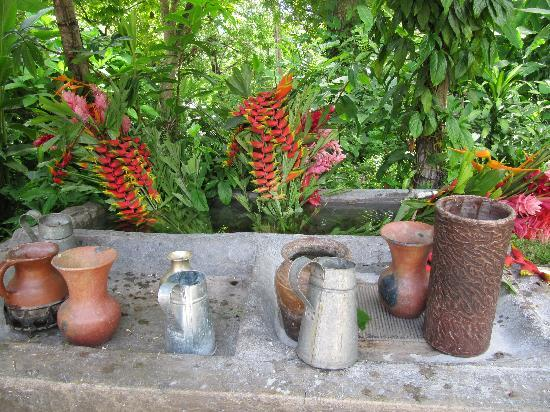 Hacienda San Lucas: beautiful fresh flowers