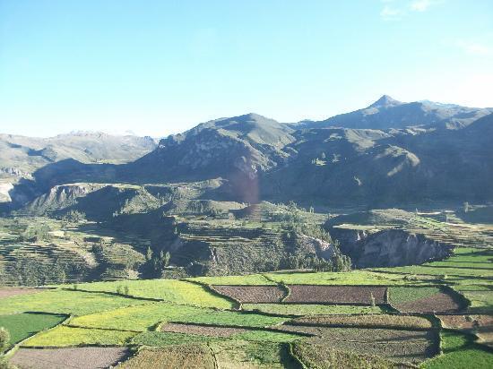 Yanque, Peru: Balade dans les environs