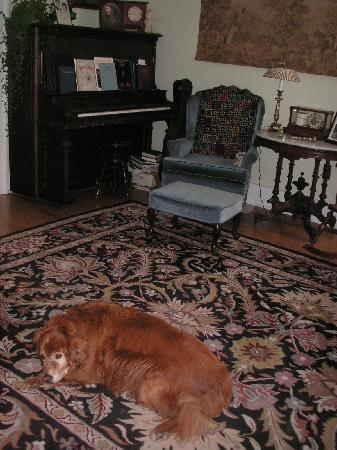 Bogan Lane Inn: Jake greets you in the front parlor (and yes, you can play the piano if you like)!