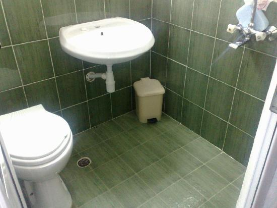 Arda Hotel: shower toilet sink all in one