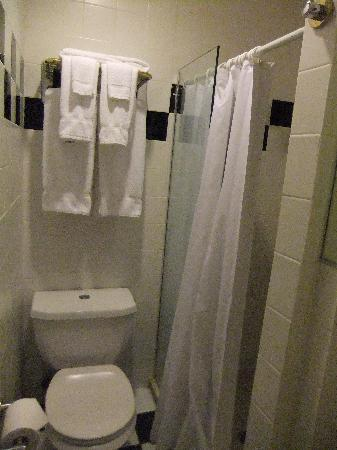 Mayfair Hotel: the shower and stool