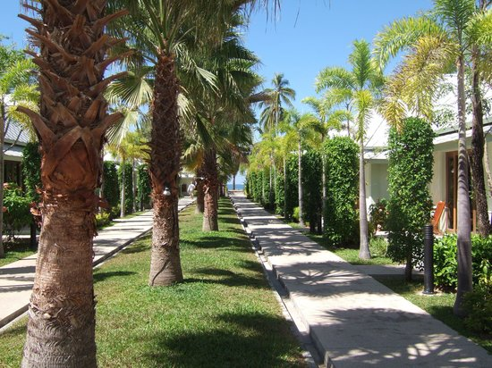 The Beach Boutique Resort: On the way to the restaurant and the beach