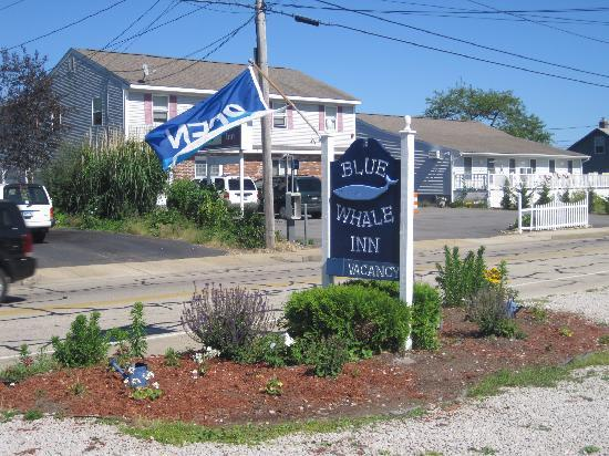 Blue Whale Inn: Entrance Sign