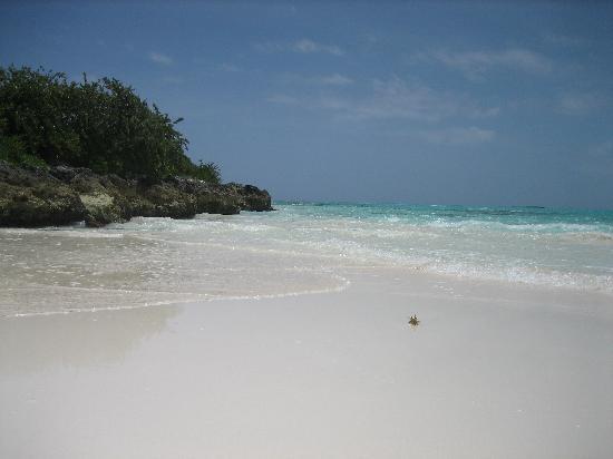 Grand Isle Resort & Spa : Part of Grand Isle's beach