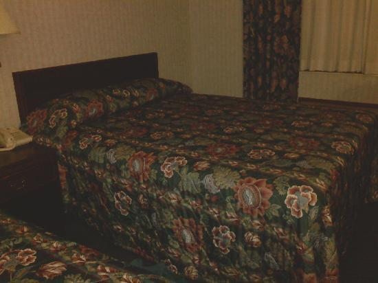 Best Western Inn & Suites: Basic bed