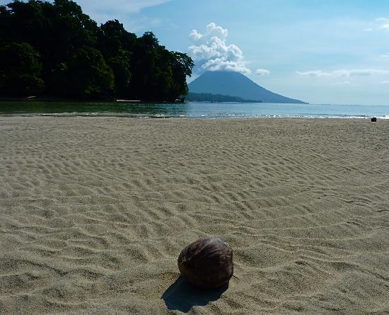 Bunaken Cha Cha Nature Resort: nearby sand bar