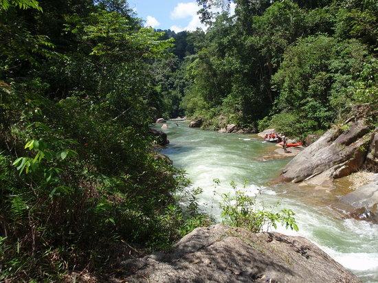 Jungle Lodge Malaysia